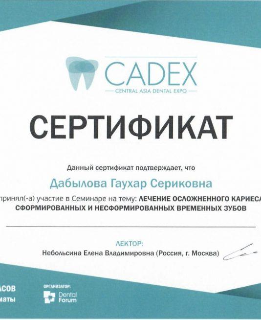 sertifikat-stomatologa-58